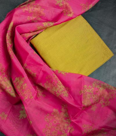 Pure cotton Top & Organza Dupatta